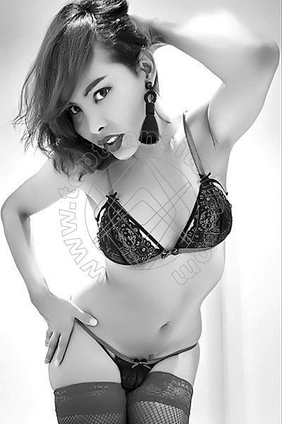 Asia Young BRESCIA 3895203577