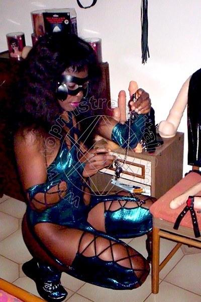 Lady savannah BOLOGNA 3286007846
